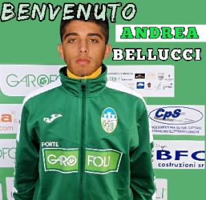 Andrea Bellucci2